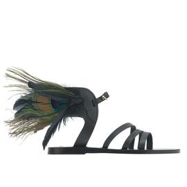 Peacock Ikaria - Black