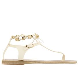 Asimina Gold Shells - Off White