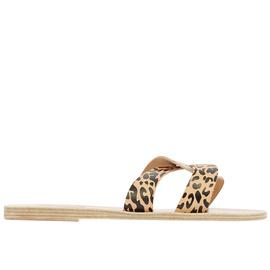 Desmos - Natural/Cheetah